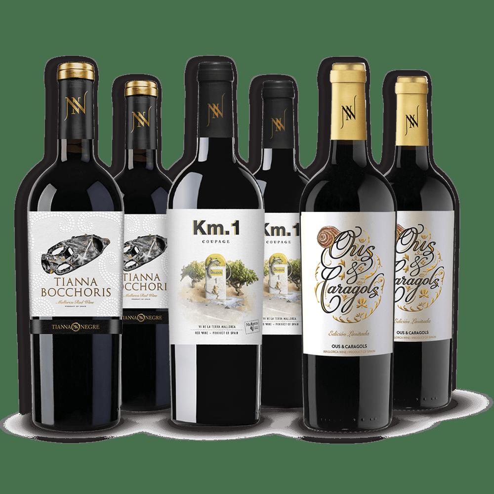 Lote Vinos Celler Tianna Negre 6