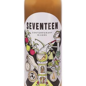 Seventeen Apple Kombucha Caja 24 Botellines 20cl